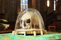 Череп святого Войтеха в кафедральном соборе святых Вита, Вацлава и Войтеха (Фото: Pelz, Wikimedia Commons, License CC BY-SA 3.0)