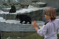 Фото: Пражский зоопарк