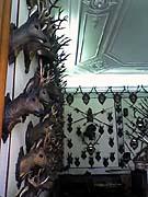 Зал хотничьих трофеев