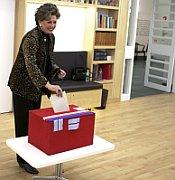 Ая Врзаньева выбирала в США (Фото: ЧТК)