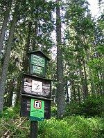 Шумава