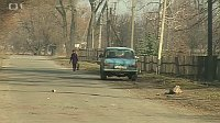 Волынские чехи в городке Малиновка (Фото: ЧТ24)