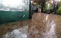 Пражский зоопарк (Фото: ЧТК)