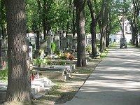 Ольшанское кладбище (Фото: Кристина Макова)