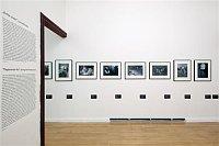 Выставка «Конец авангарда? От Мюнхенского сговора к коммунистическому перевороту»