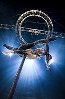 Circus Cirkor