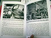 Книга «Гранитный Сталин»
