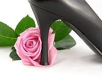 Nemáte na růžích ustláno (Фото: stock.XCHNG)