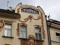 Дом Топича (Фото: Олег Фетисов)