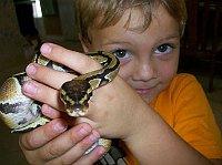 Фото: Reptile Kingdom
