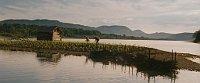 «Кукурузный остров» (Фото: Film Servis Festival Karlovy Vary)