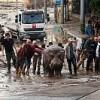 Чешские зоологи отправляются на помощь Тбилиси